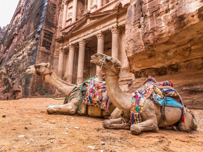 De Petra à La Mer Morte - DAmman à Amman 4 *