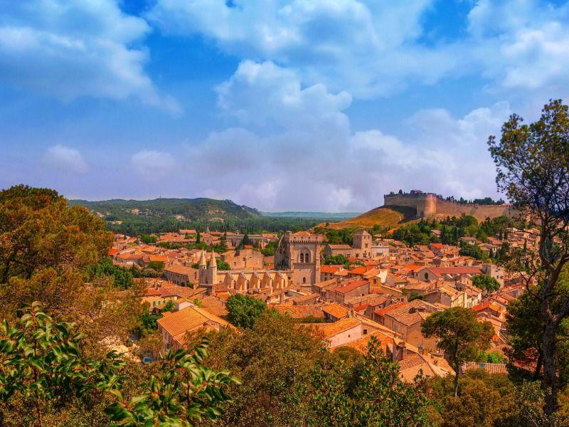 France - Sud Est et Provence - Arles - Avignon - Autotour Entre Histoire et Gastronomie - Avignon et Arles