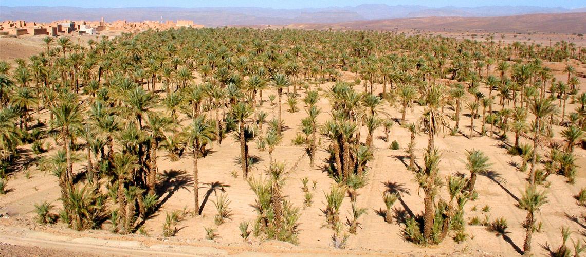 combine grand sud maroc extension club coralia aqua mirage
