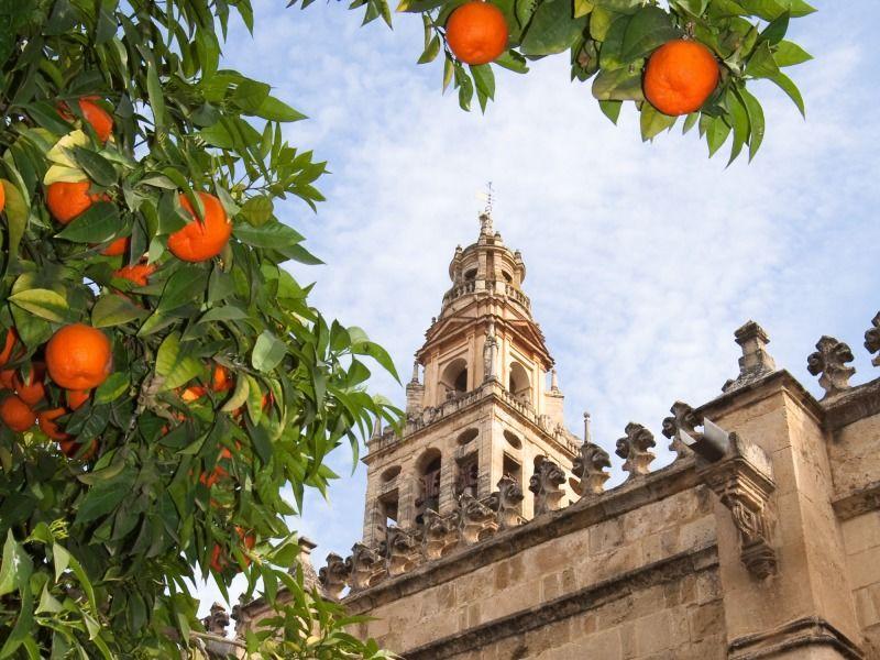 Sur les Routes Andalouses - De Malaga à Malaga