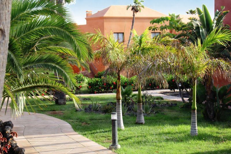 Canaries - Fuerteventura - Espagne - Hôtel Oasis Papagayo Sport & Family 3*