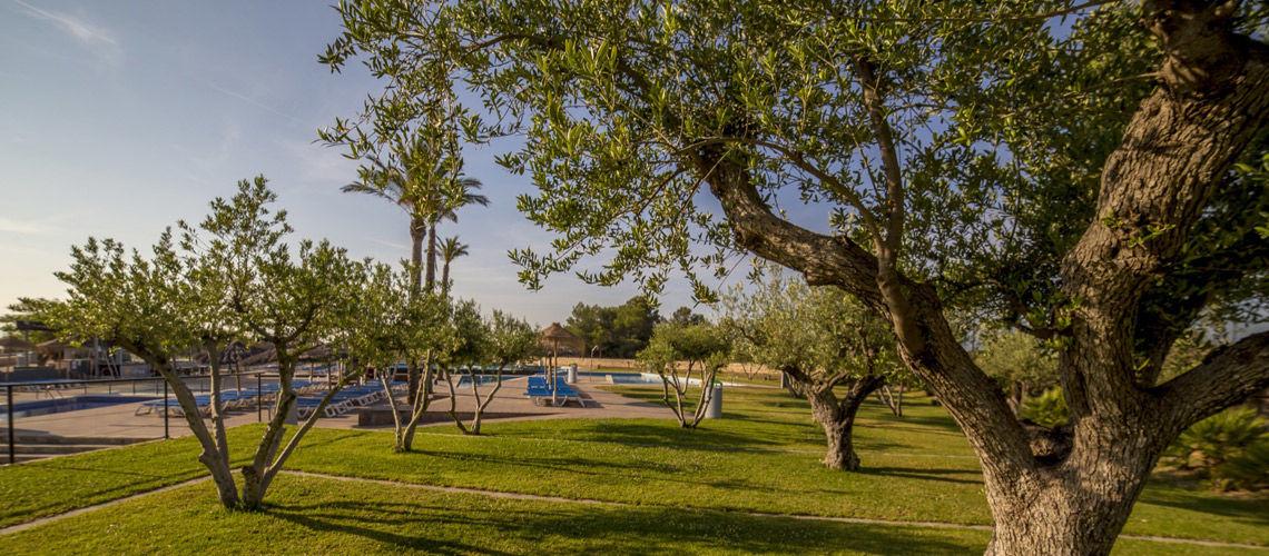 Exterieur club coralia les oliveres