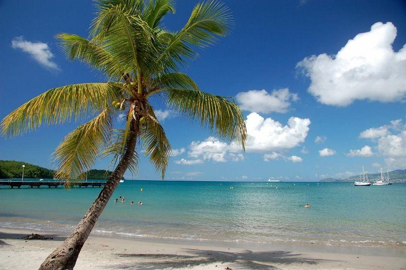 Séjour Martinique - Village Créole 3* avec Location de voiture