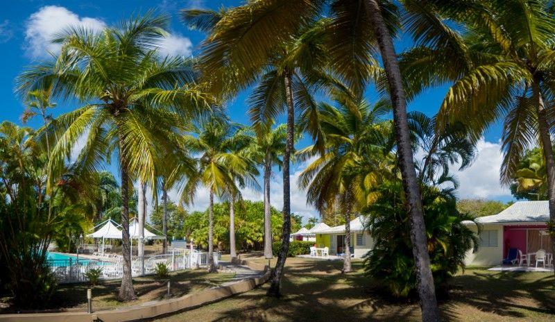 vue bungalow et piscine