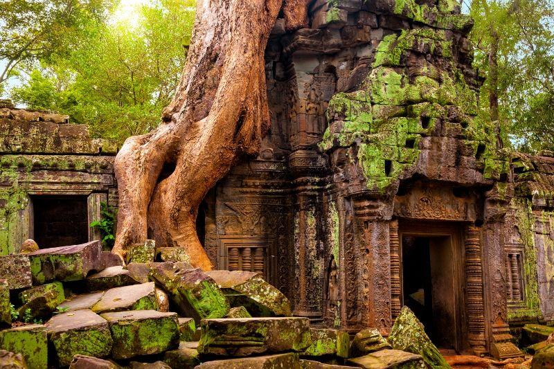 les merveilles du cambodge