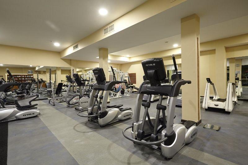 activities   amenities aayu gym
