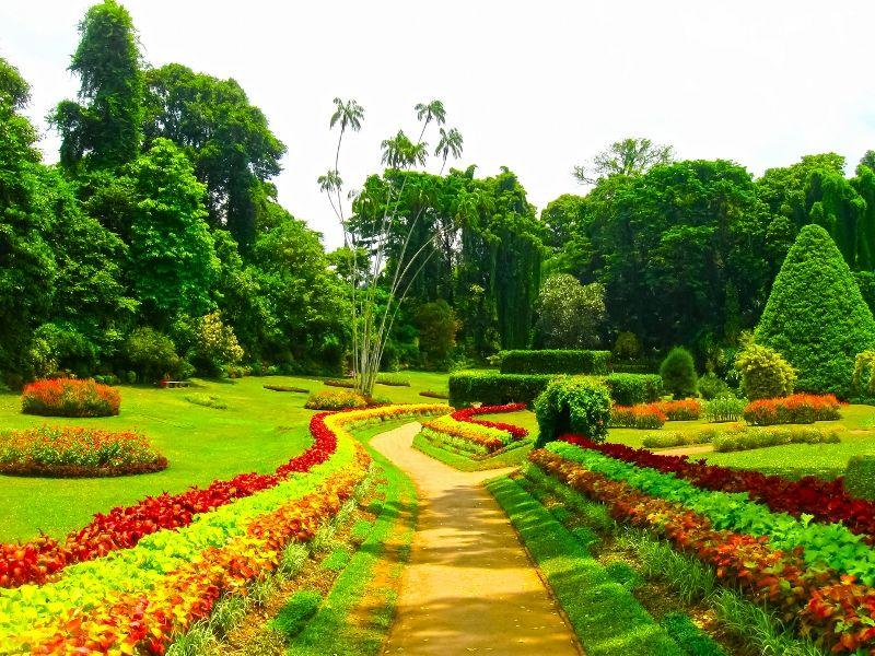 Les Incontournables du Sri Lanka