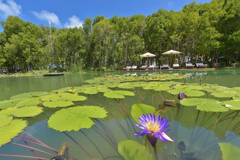 DL-HRES-Dreamland Lake 03