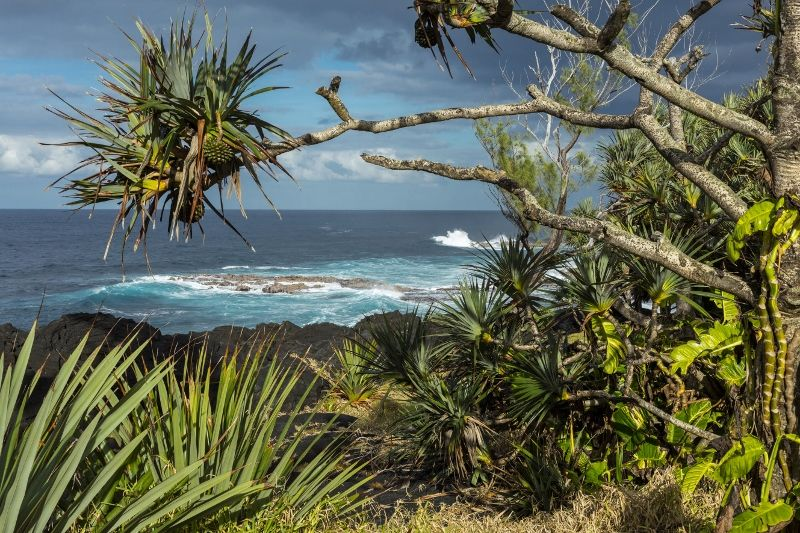Autotour À la Découverte de la Réunion & Extension Tarisa Resort and Spa 3*nl