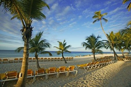 beach at viva wyndham dominicus palace_8937288969_o
