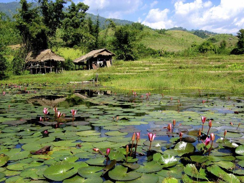 Thaïlande - Circuit Le Voyage Sacré - De Bangkok à Chiang Mai