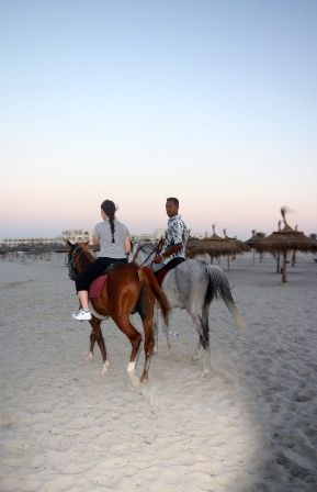 B_59_cheval