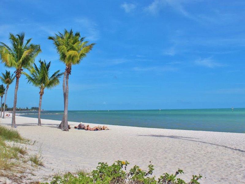 Découverte de la Floride (De Miami à Miami)