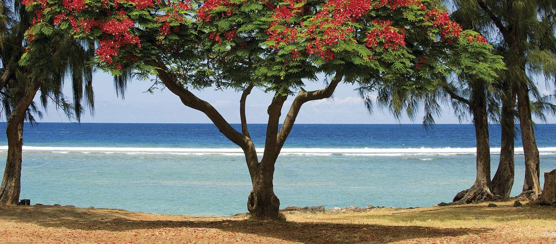 Autotour Découverte de la Réunion + Extension Résidence Potosi 3* - voyage  - sejour