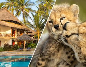 Safaris Ngorongoro, Tarangire et Manyara et Séjour au Kappa Club Waridi Beach Resort & Spa 4*
